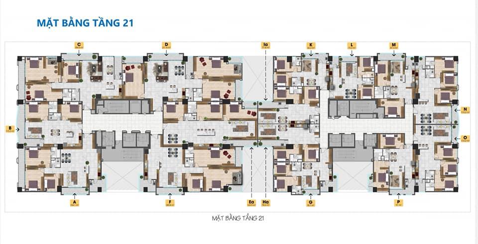 Thiết kế căn hộ Tam Đức Plaza tầng 21